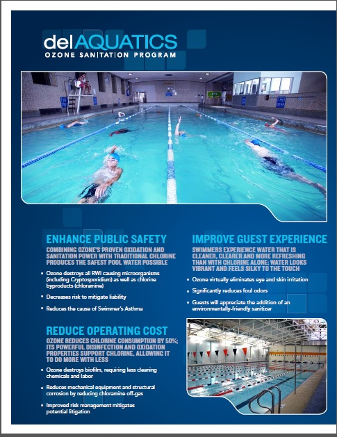 Swimming Pool Water Problems : Eliminate problem water with secondary sanitization