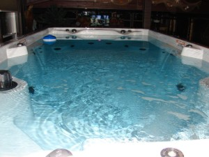 Bricen SwimSpa (2)